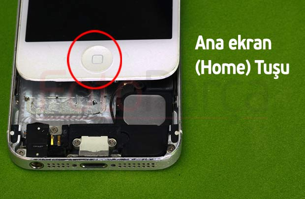 iPhone Ana ekran Home tuşu